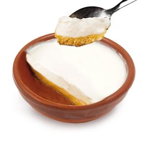 Crema de Yogurt con Tocino de Cielo